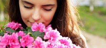 Essencias florais de bach comprar